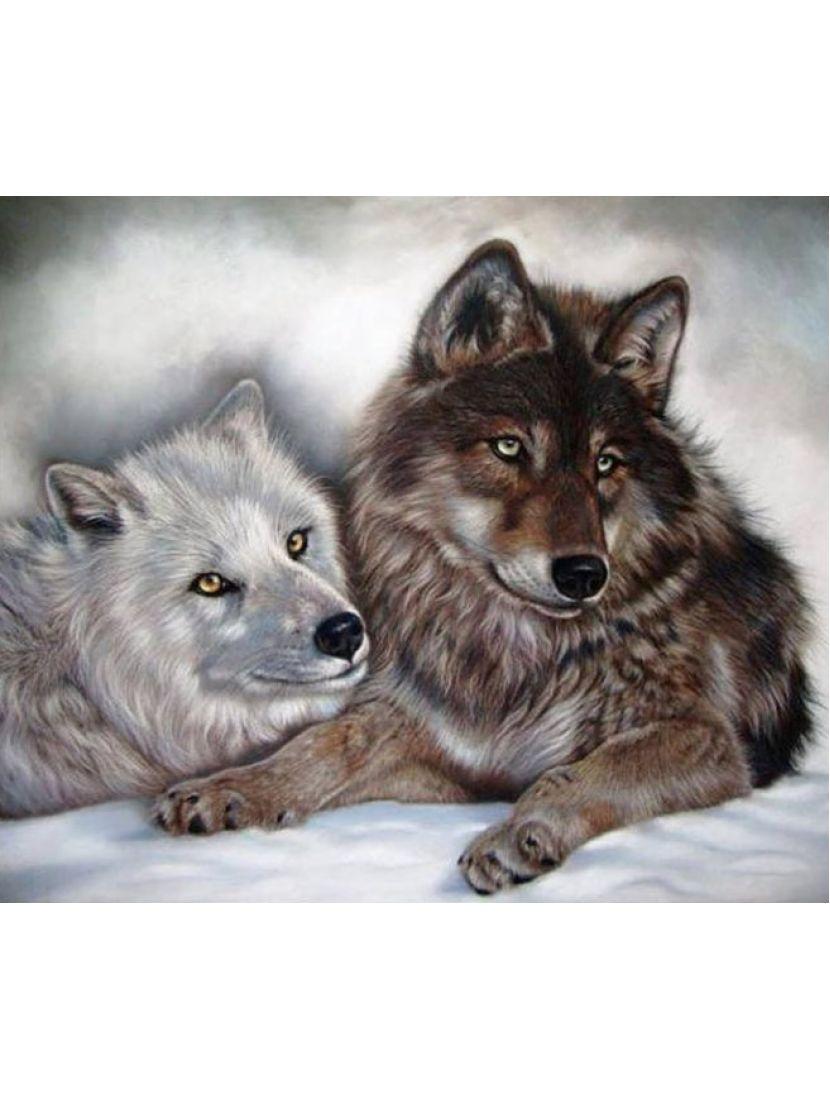 Алмазная мозаика «Два волка»