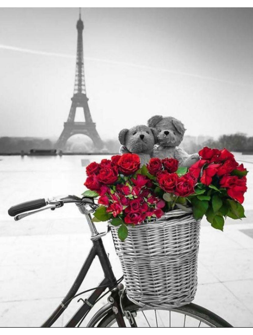 Алмазная мозаика «Париж и розы»
