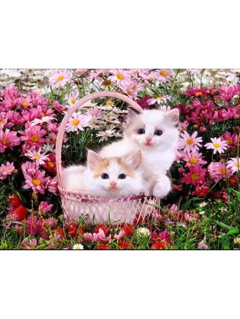 Алмазная мозаика «Котята в цветах»