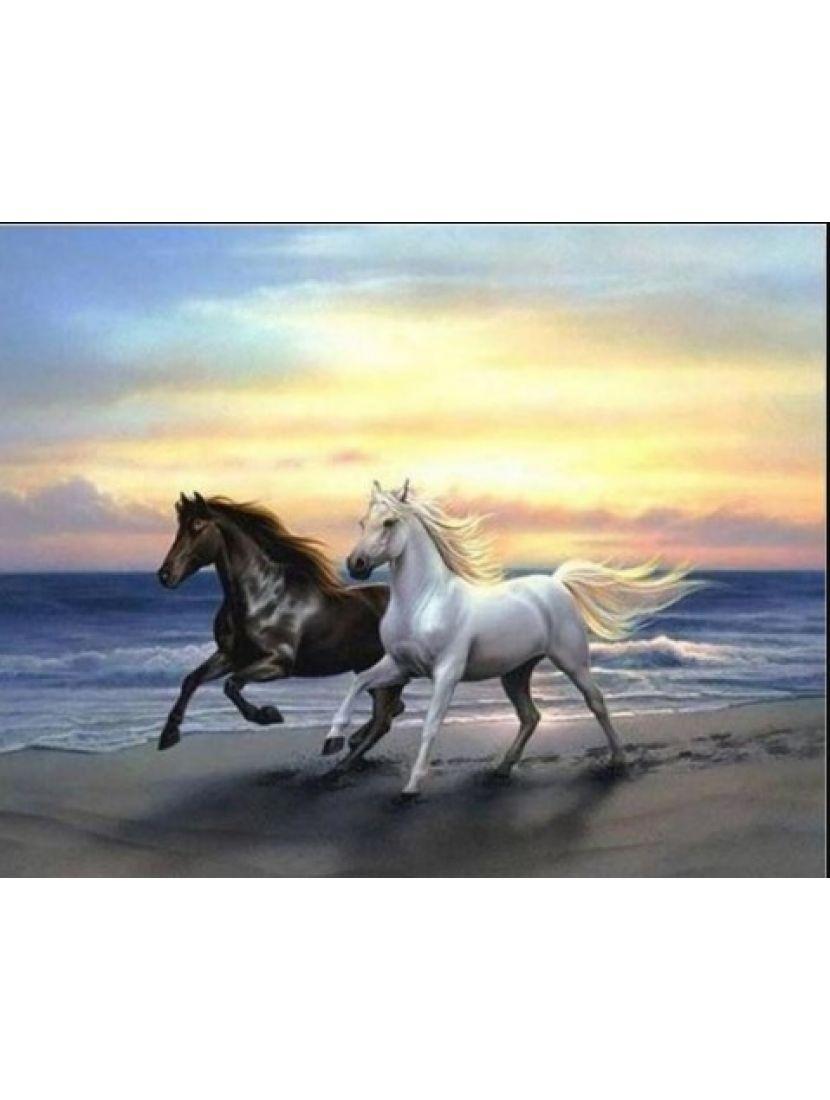 Алмазная мозаика «Конь белый и конь вороной»