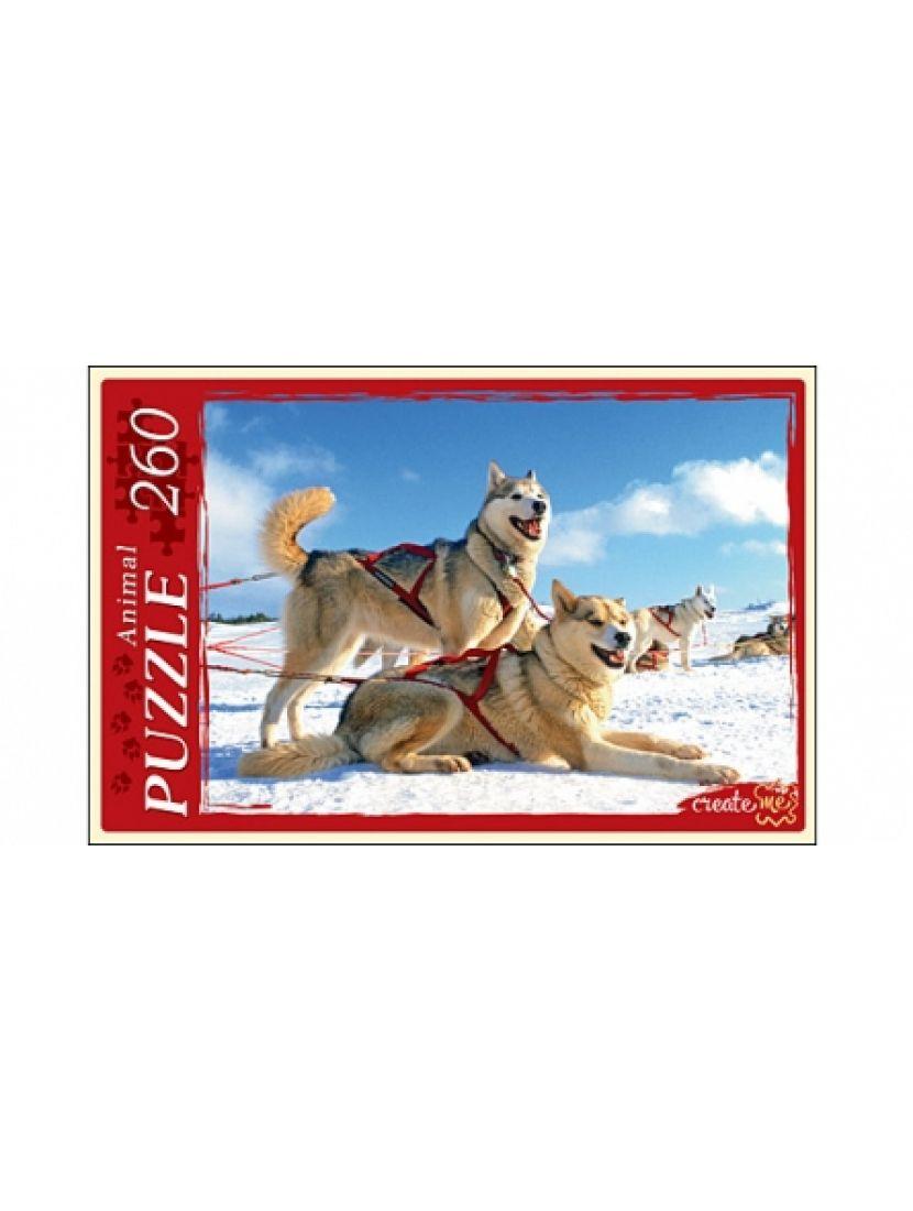 Пазл «Собаки в упряжке» 260 элементов